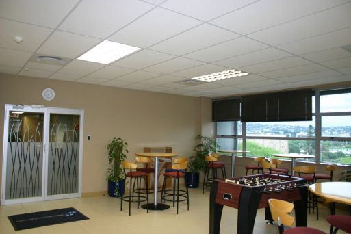 Econocal Suspended Ceiling Tiles Pelican Ceiling Systems
