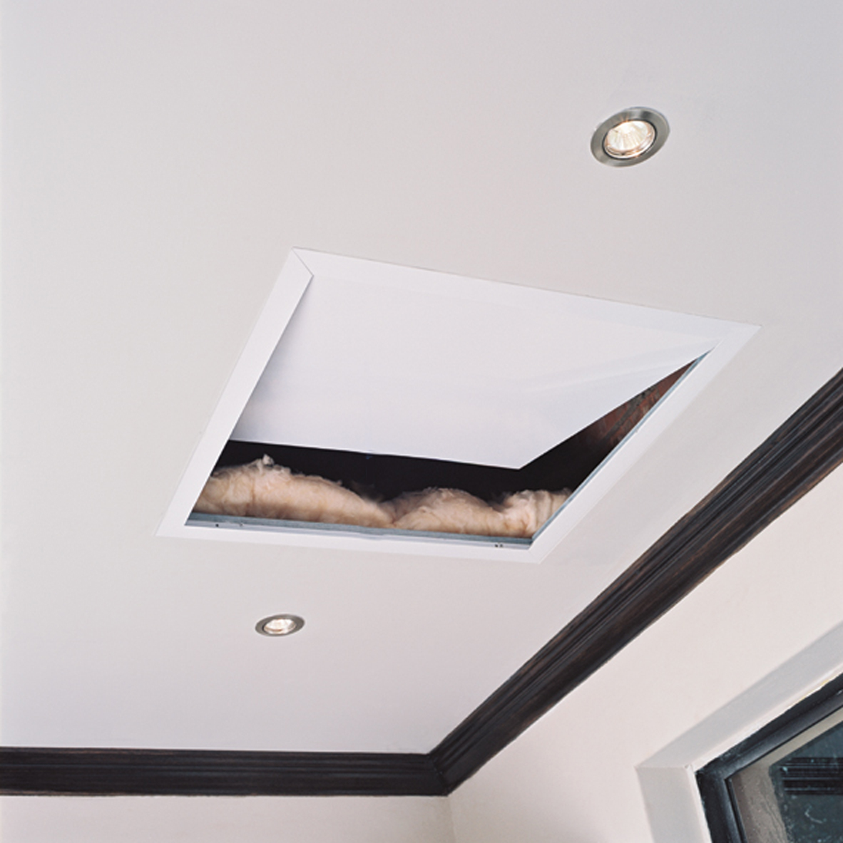 Ceiling Access