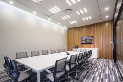 Boardroom Ceilings and Partitions