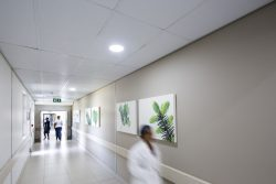 KwaDukuza Private Hospital Passageway