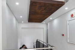 Wood Featured Ceiling Inlays At Bidvest Panalpina Logistics Frosterly Park